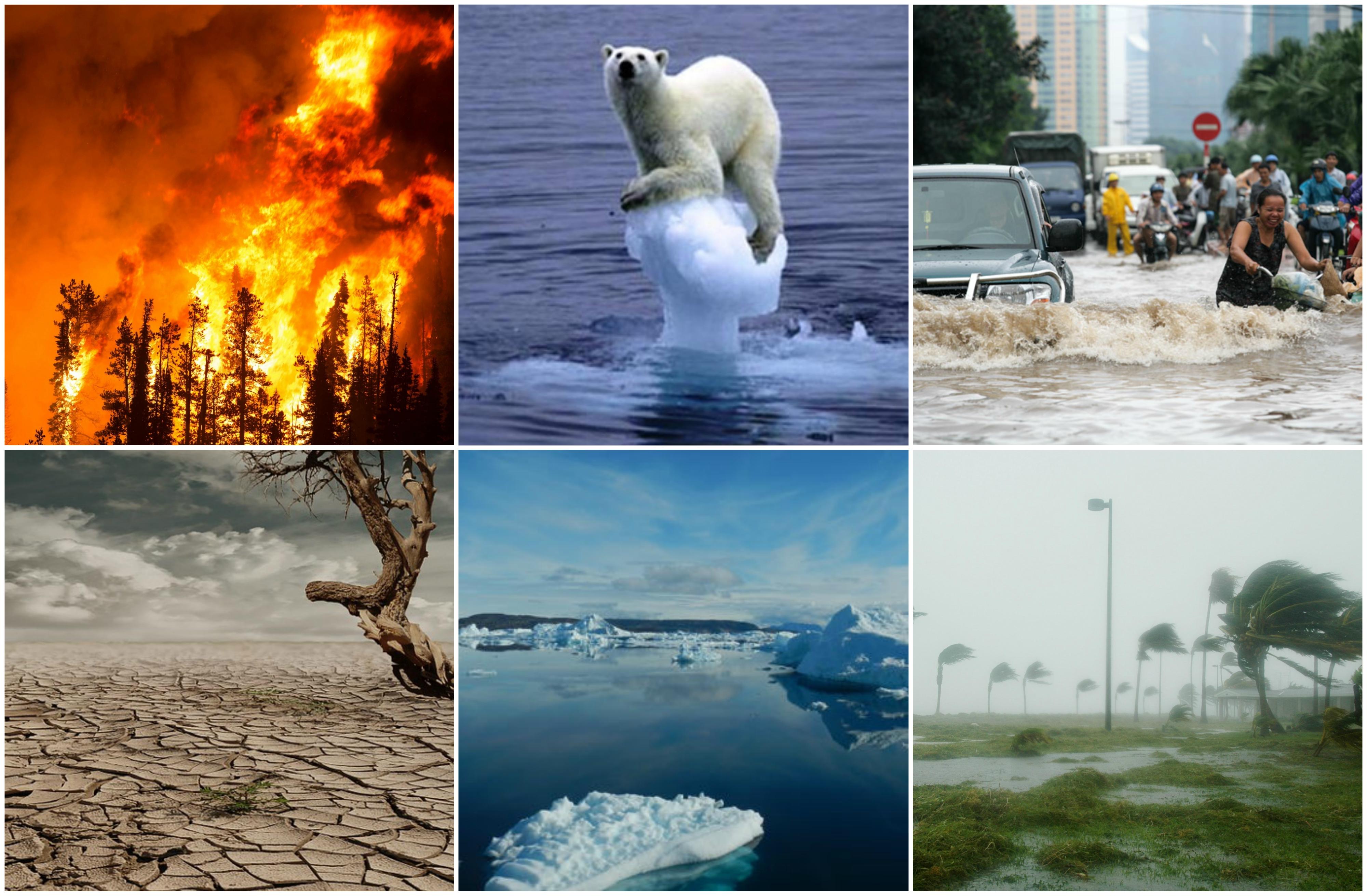 Go to Климатске променe: шта следи