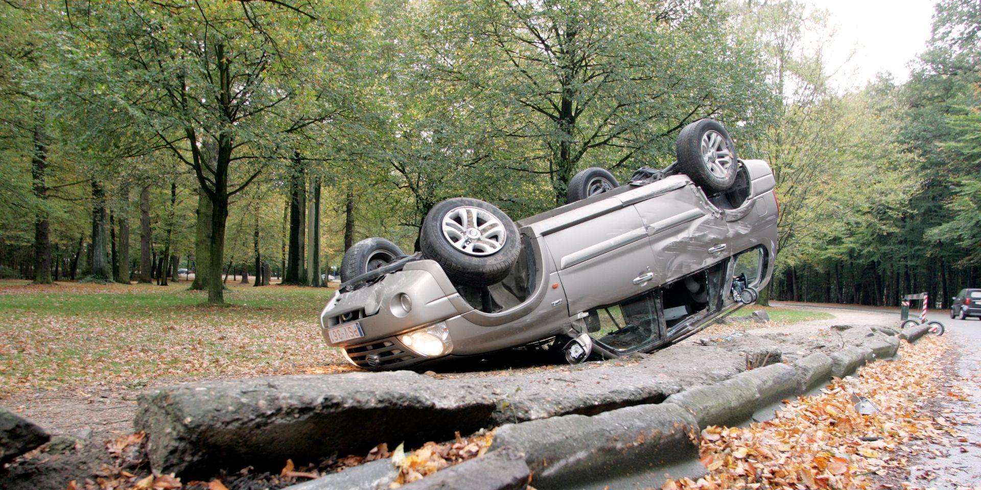 Go to Возимо брзо, возимо пијани и гинемо лако: Зашто 300 на сат?