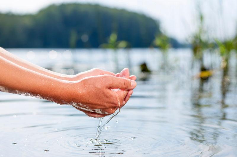Go to И не само о језику: држи ли то воду, или пије па пушта?
