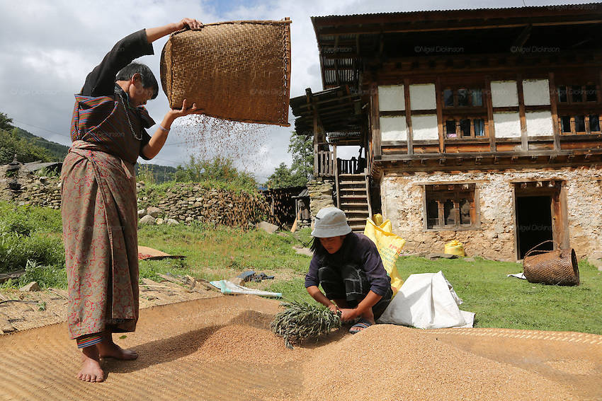 Go to Бутан има јединствени пут у будућност: срећа је, ипак, субјективна