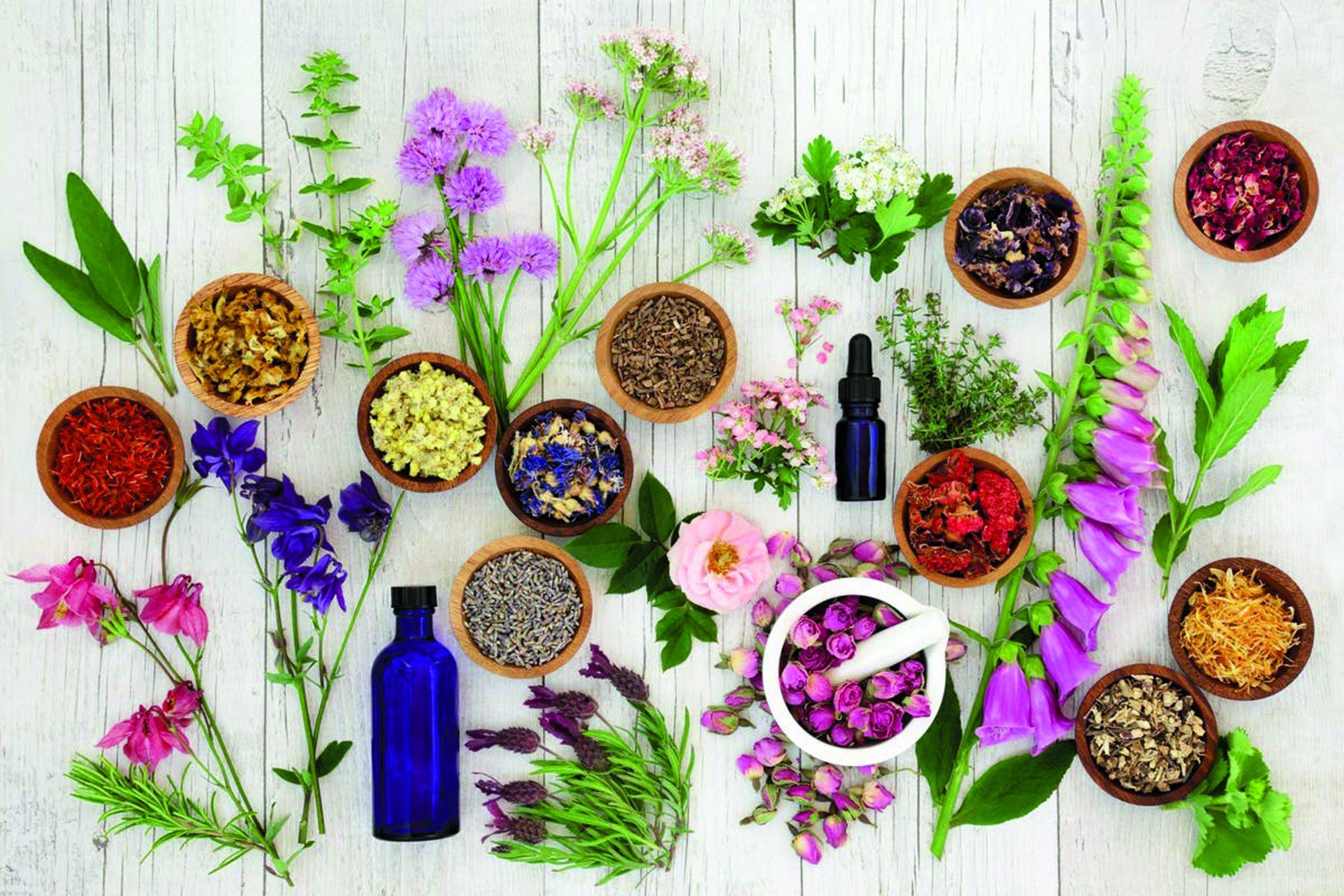 Go to Moć esencijalnih ulja: zaljubljen u aromaterapiju