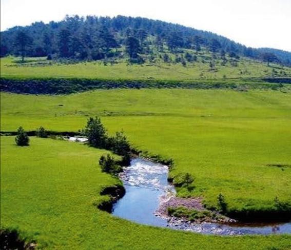 Go to НАЈЧИСТИЈЕ РЕКЕ У СРБИЈИ <br> Рзав је појам за бистру воду