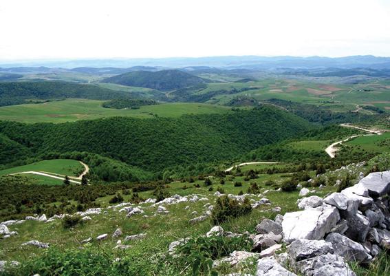 Go to IVANJICA I NJENE PLANINE <br> Kolevka seoskog turizma