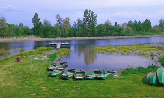 Go to ЗАСАВИЦА <br> Место где природа газдује